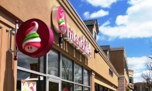 The Village at Towne Centre – Spotsylvania Mall – Menchie's Frozen Yogurt tenant